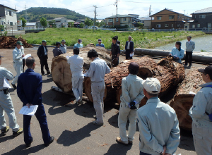 木材共販市(直営)